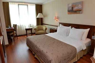 mcan-accommodation-Dedeman-Istanbul-Hotel-3