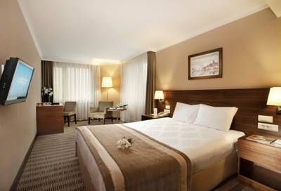 mcan-accommodation-Dedeman-Istanbul-Hotel-9