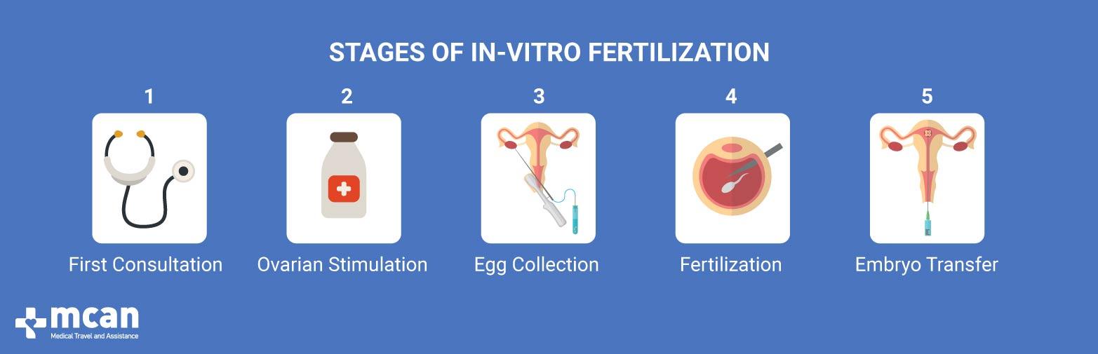 Stages of In-Vitro Fertilization (IVF in Turkey) MCAN Health