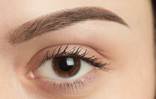 Augenbrauentransplantation Türkei